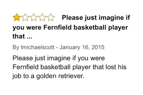 Amazon, Air Bud