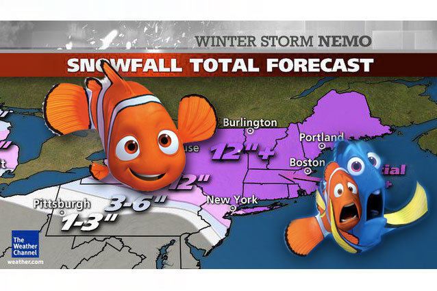 Finding Nemo Winter Storm Image