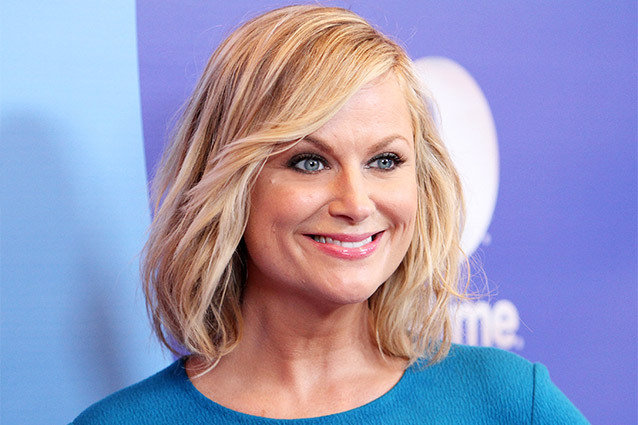 Amy Poehler and brother Greg Poehler Get New Comedy with NBC
