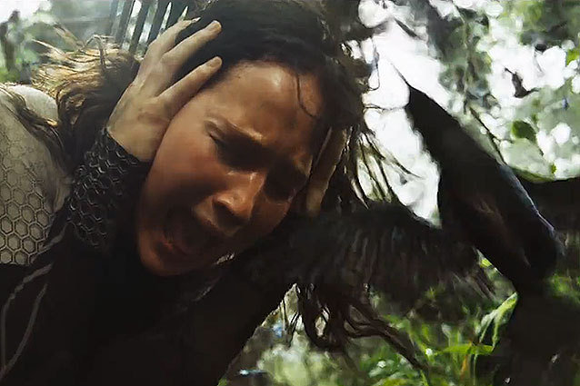 Hunger Games: Catching Fire, birds