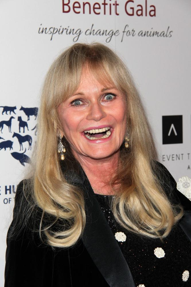 valerie perrine measurements