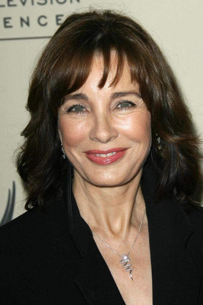 Anne Archer earned a  million dollar salary, leaving the net worth at 10 million in 2017