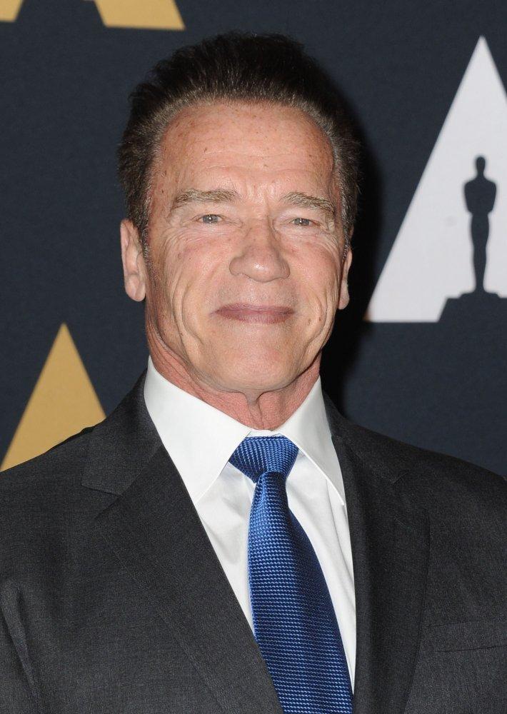 Arnold Schwarzenegger A Real Essay Research