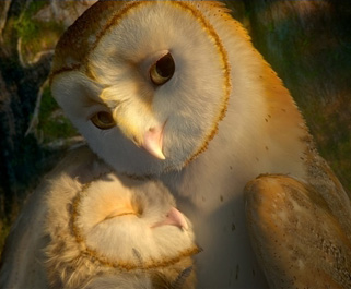 OwlsLove.jpg