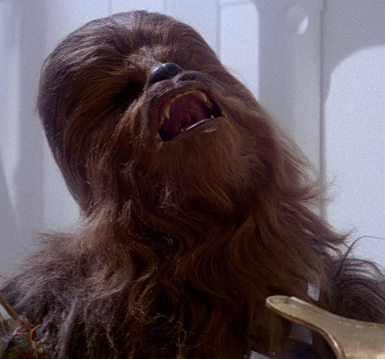 May The Fourth Be With You Wookie: Star Wars Day: A Reminder On The Dangers Of Fandom