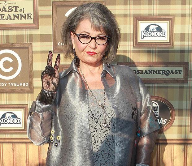 Roseanne Barr Roast