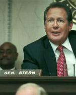 Gary Shandling as Senator Stern