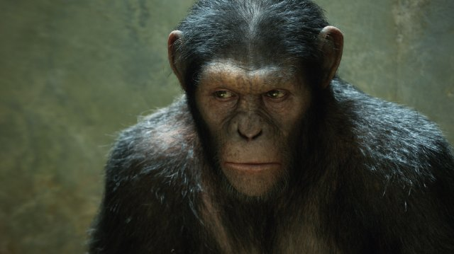 Rise of the Apes Andy Serkis