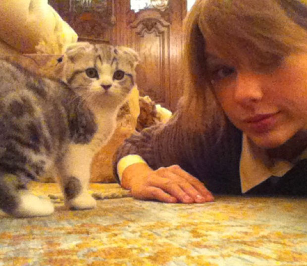 Taylor Swift Cat Meredith