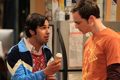The Big Bang Theory, The Wildebeest Implementation