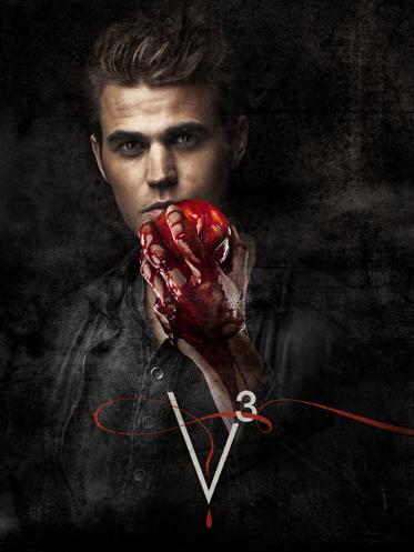 Paul Wesley Stefan Vampire Diaries